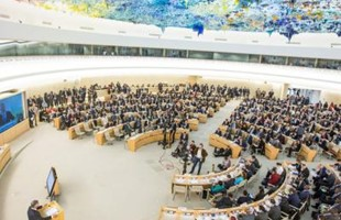 Bird's-eye view of people sat in the Human Rights Council room in Geneva, underneath the colourful textured